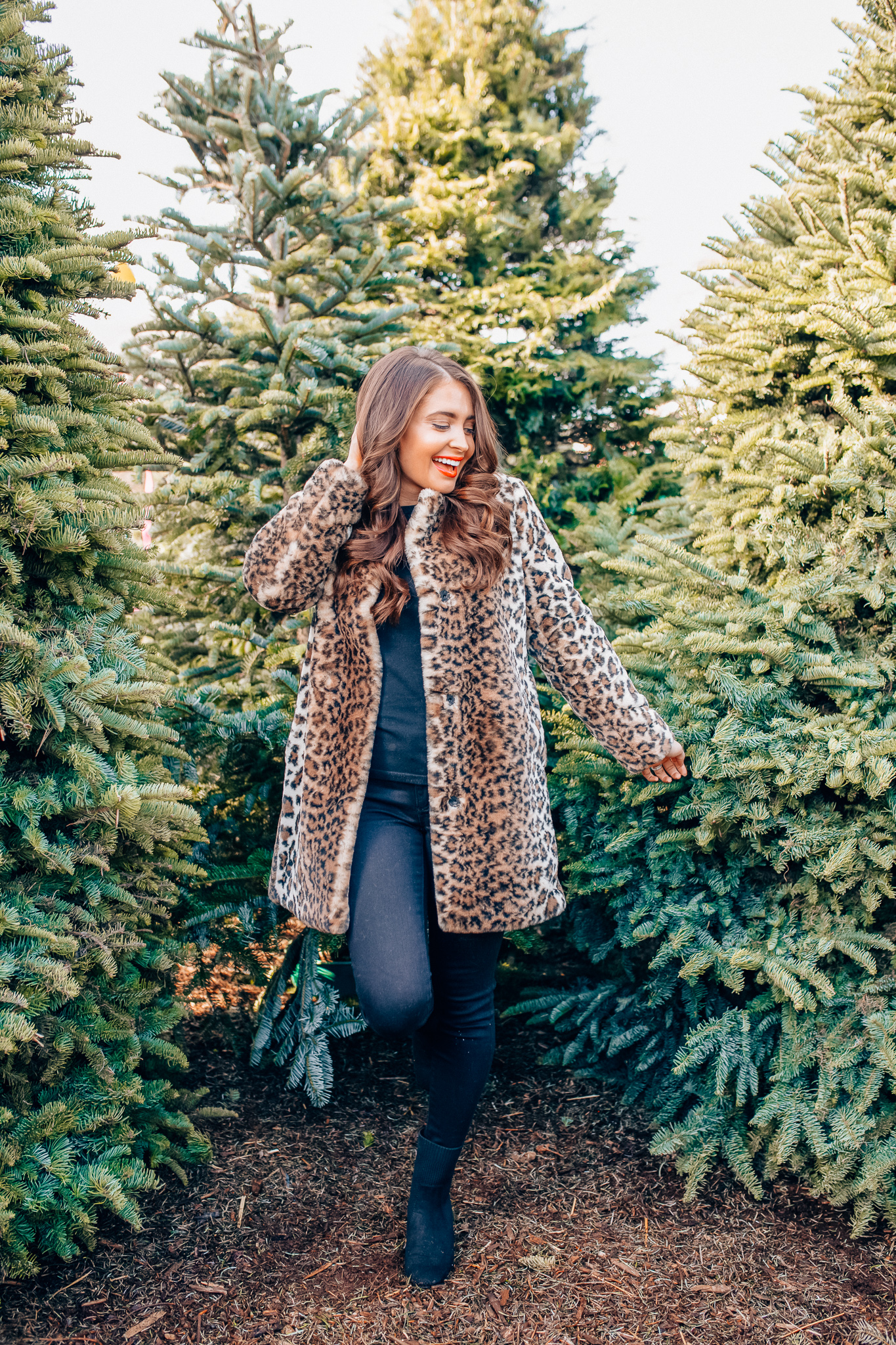 Leopard Holiday style featured by top Orange County fashion blogger, Maxie Elle: image of a woman wearing an Ann Taylor leopard print coat, Ann Taylor 3/4 sleeve black sweater, Ann Taylor black skinny jeans, and Ann Taylor block heel booties